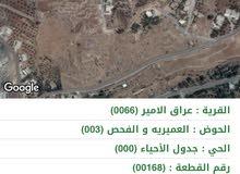 ارض للبيع منطقة وادي السير / عراق الامير من المالك مباشره