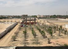 للبيع ارض في الريف الاوروبي ط اسكندرية الصحراوي
