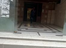 University Street neighborhood Irbid city - 100 sqm apartment for rent