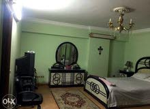 شقة للايجار  مصر الجديدة نادي الشمس