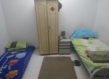 غرف إيجار. حي الشميسي