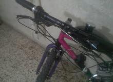 دراجه هوائيه بماتور بنزين