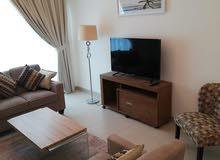 دبي القوز كمبوند الخيل هايتس غرفة وصالة مع بلكونة - ايجار شهري شامل