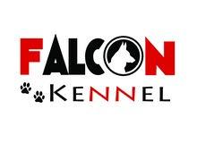 أكاديمية فالكون لتدريب الكلاب Falcon Kennel