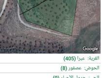 ارض زراعيه مساحه 5دونمات و300 متر