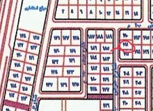 ارض حي القدس