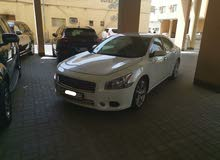 Nissan Maxima 2014 (White)