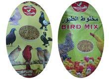 Chicken/Birds feed