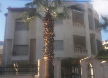 excellent finishing palace for sale in Amman city - Tla' Ali