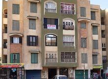 شقة للبيع مساكن ايجيكو مدينة المستقبل الاسماعيلية شارع رئيسي (عقد أخضر)