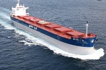 الشحن البحري وتخليص الجمركي لقطر ولجميع انحاء العالم باقل الاسعار