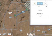 أرض مفروزة للبيع بسعر 18500دينار شرق جامعة العلوم والتكنولوجيا
