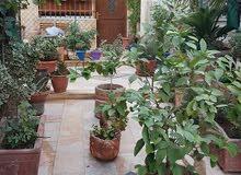 Abu Alanda neighborhood Amman city - 250 sqm house for sale