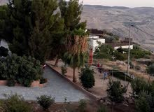 ارض ومزرعه للبيع في عمان / بيادر وادي السير - ابو السوس