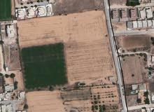 قطعة ارض في عين زارة - طريق الآبيار- جنب مسجد طيبة