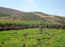 شقه ارضيه في دير غبار342متر مع حديقه و كراج مستقل