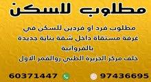 مطلوب مشاركة سكن بالفروانية 60371447