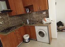 شقة فارغة للايجار ام السماق 230 شهري رووف
