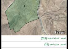 قطعتين ارض ب مساحات مختلفه ومساحه ع الطريق الملوكي البتراء العقبه