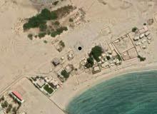 ارضية على ساحل الغدير جنبها شاليهات