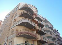 شقة وروف خاص 105م لكل طابق بجوار البحر مباشرة في شاطئ النخيل اسكندرية