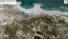 ارض 68000متر مربع للبيع على شاطئ البحر مباشرة قرب فيلا سيلين