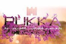 pukka مستقبل يتحقق بايادي مصرية