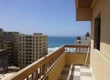مصيف غرفتين وريسيبشن بالتشطيب بشاطئ النخيل 2