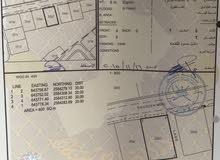 ارض شبة كوونر في مدينة النهضة الامتداد الاول