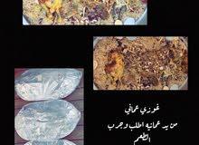 غوزي / لحم طازج