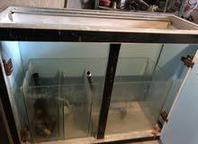 حوض سمك بحري للبيع مع كامل معداته