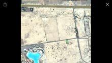 ارض للبيع  بالغور موقع مميز تنظيم خاص بجانب منتجع البحيرة حوض الجلد