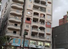 شقة للايجار في عجمي