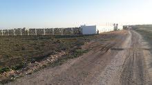 فرصة أرض للبيع ، قريبة من ياسمين الحمامات
