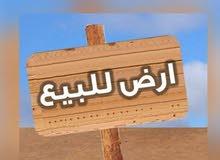 2 هكتار ع رئيسي طريق طرابلس ب 5 مليووون