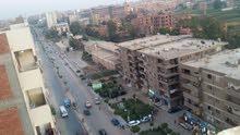 رووف للبيع 310 متر علي شارع جمال عبد الناصر الرئيسي بشبين الكوم