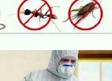 ش/ الشروق لمكافحة الحشرات الضارة بجميع انوعها0544972283