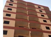 شقة تمليك ببرج جديد 11دور