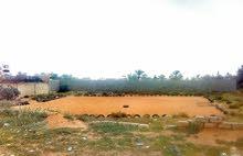 قطعة ارض بي تاجوراه ابي الاشهر خلف مطار امعتيقه