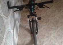 vélo trinx