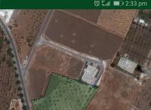 دونم أرض في السرو قرب جامعه الاهليه تبعد عن شارع الرئيسي 300م