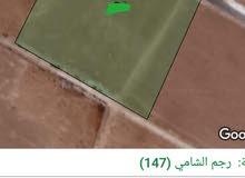للبيع ارض 11 دونم في رجم الشامي داخل التنظيم