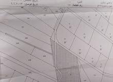 ارض للبيع في عبين قرب الديوان الغربي