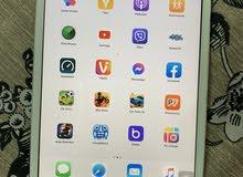 iPad mini 16 GB wifi only