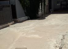784 متر مربع في أبوسليم
