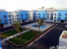 TOP VIP apartment for rent  in faysalya