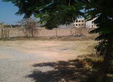قطعة ارض للبيع 500م في طريق الشوك