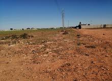 مزرعه 3هكتار ونص بنغازي طريق طرابلس امام شيل ومسجد االجبو