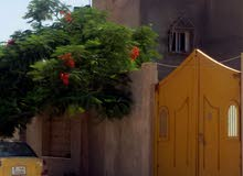 الهواري  ...شارع كتربيل قرب مدرسة شهداء الهواري ..500 الف قابل للنقاش