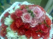 زهور ونباتات